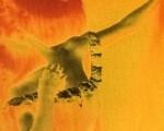 Едгар Дега. Балерина са подигнутом руком, 1895 - 1896
