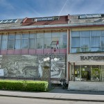 Muzej Leskovac