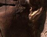 Београдска мумија
