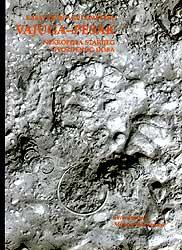 Vajuga-Pesak : nekropola starijeg gvozdenog doba