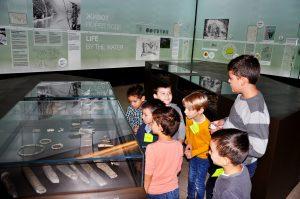 Жути тим открива праисторијску свиралу од кости